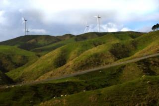 Pipiwharauroa Walking And Biking Trail