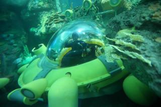 Virginia Aquarium And Marine Science Centre