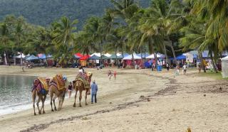 Image of Airlie Beach Community Market