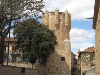 Torre Del Clavero Tower