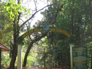 Aralam Wildlife Sanctuary