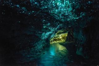 Te Anau Glow Worm Caves