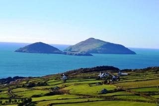 wild kerry day tours