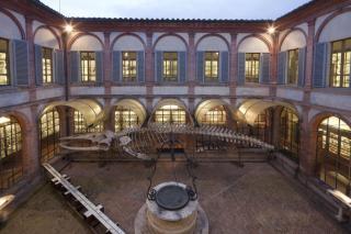 Natural History Museum Of Siena Or Museo Di Storia Naturale Dell'Accademia Dei Fisiocritici