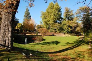 Jardin Doise Aix Tropicaux