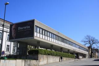 Stavanger Museum
