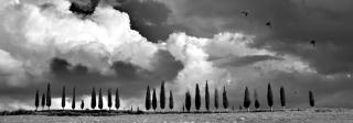 La Botega Del Sale Di Duccio Nacci Photography