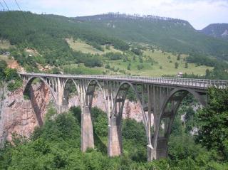 Tara Bridge