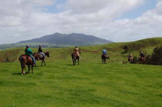 Magic Mountain Horse Treks