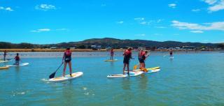 Raglan Paddle-boarding