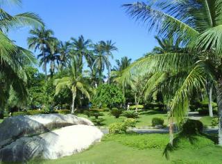 Yanuo Tropical Rain Forest Resort