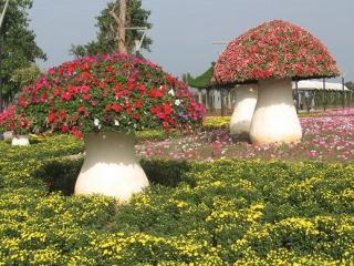 Xiamen Yuanbo Garden