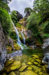 Salmon Creek Falls Trail