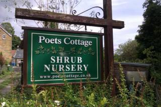 Poet's Cottage Shrub Nursery
