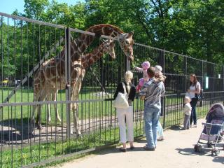 Kaliningradsky Zoopark