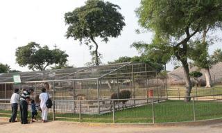 Parque De Las Leyendas