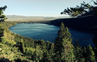 Phelps Lake Trail