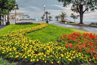 Sea Garden