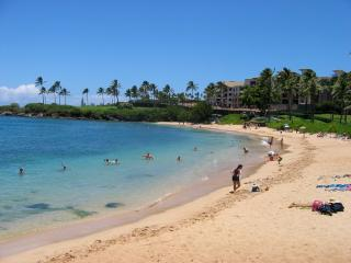 kapalua bay beach