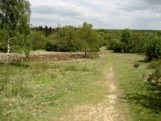 farley mount country park