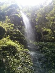 Shimla Glen