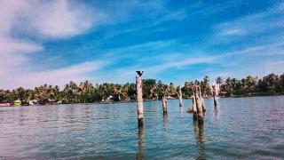Kayamkulam Lake