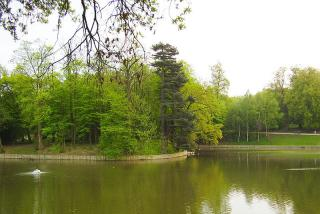 Bois De La Cambre And Foret De Soignes