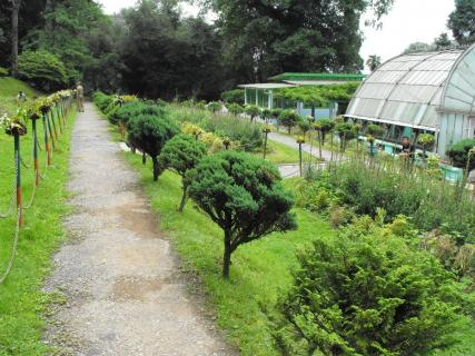 Lloyds Botanical Garden Darjeeling Reviews Ticket Price Timings Address Triphobo