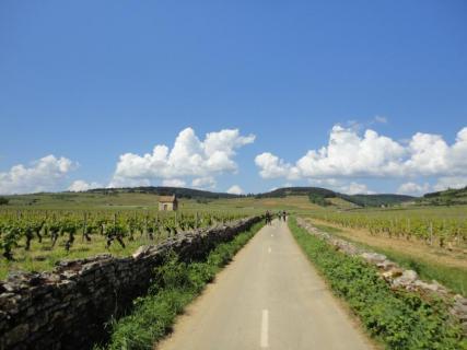 Burgundy Evasion Bike Tours
