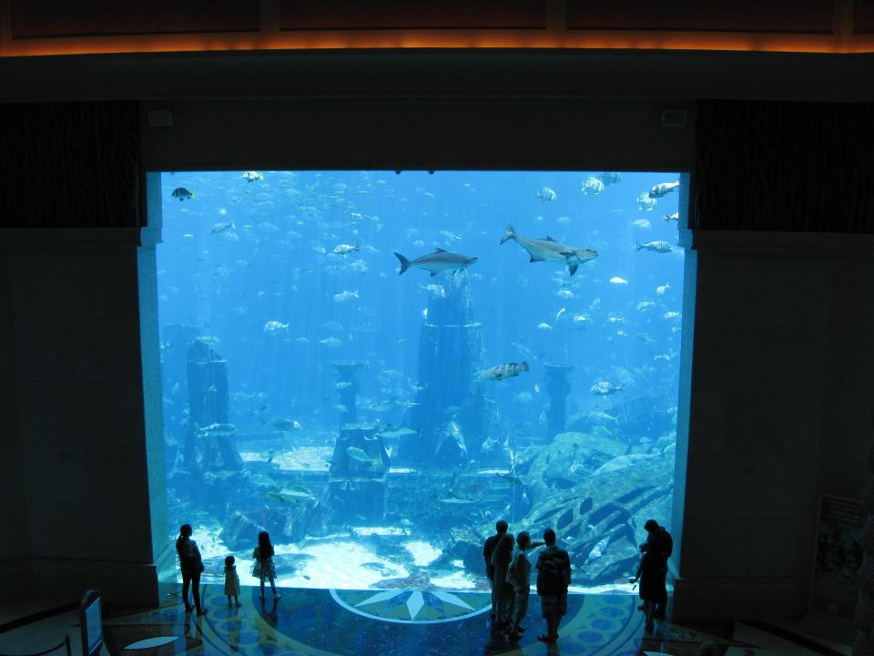 Modern Visions Of Dubai - Experience By Land And Water