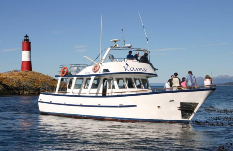 Beagle Channel Yacht Sailing - Ushuaia