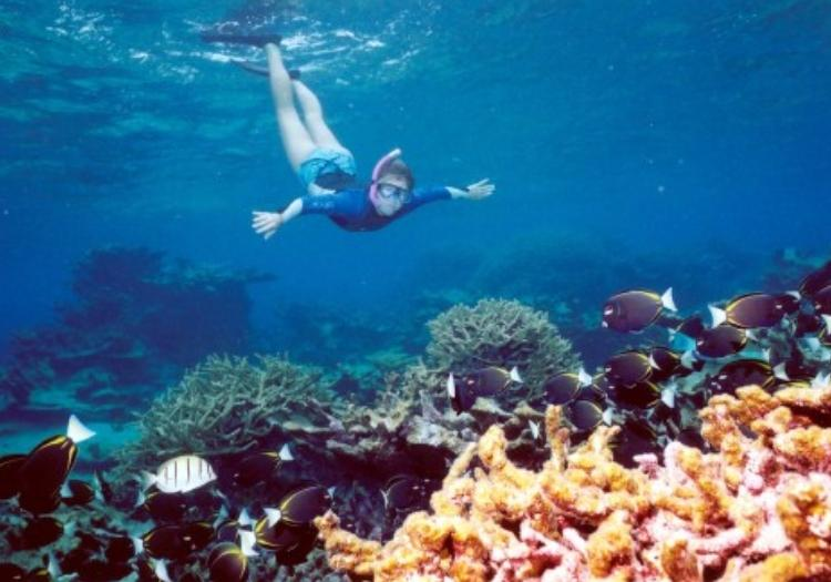 Dahab Safari And Snorkeling At Blue Hole - Sharm El-sheikh