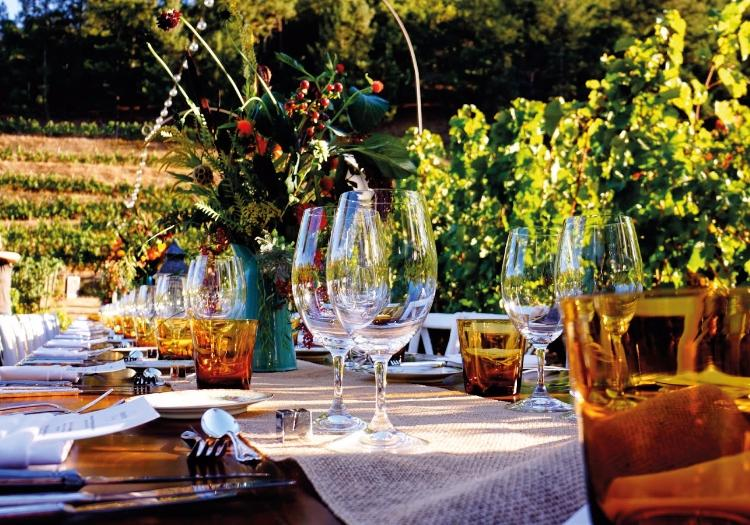 Dinner In The Chianti Vineyards - Florence