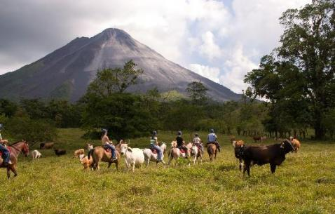 Things to do in La Fortuna
