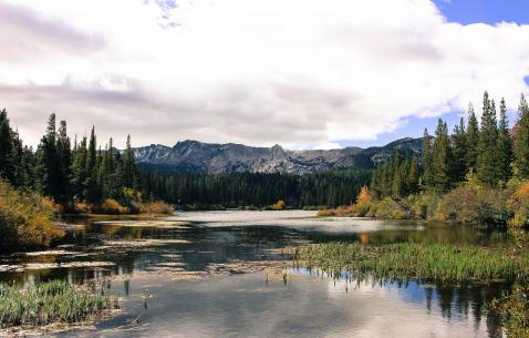 Things to do in Mammoth Lakes