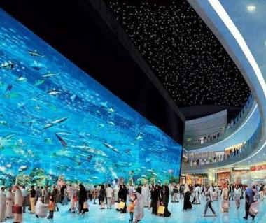 Frameless Glasses Dubai : Dubai Mall Aquarium Timings