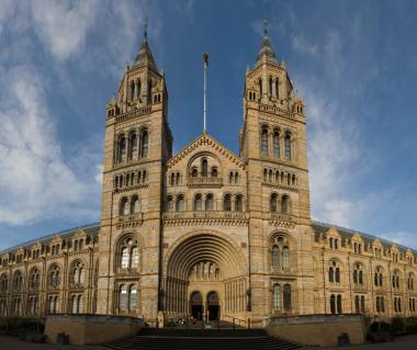 Natural History Museum Tours