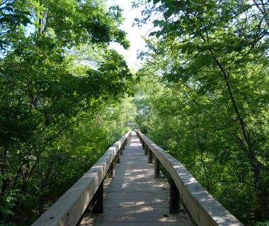 Fort Worth Nature Center Tours