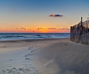 Sandbridge Beach Tours