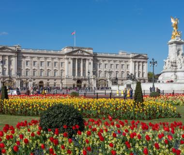 Buckingham Palace London Tours