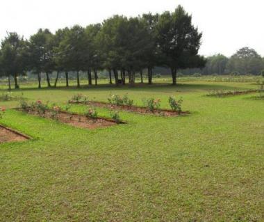 Ekamra Kanan Botanical Gardens Tours