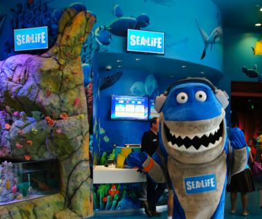 Sea Life Orlando Aquarium Tours
