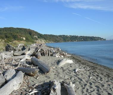 Discovery Park Tours