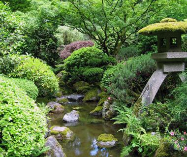 Portland Japanese Garden Tours