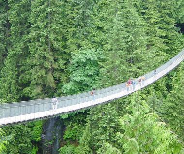 Capilano Suspension Bridge Tours