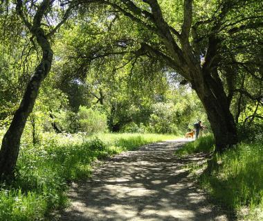 Garland Ranch Regional Park Tours