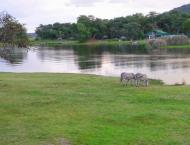 Lake Chivero Recreational Park