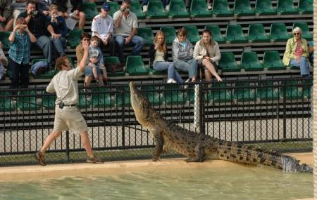Australia Zoo Image