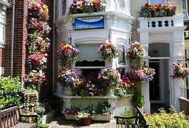 Birchwood Guest House Image