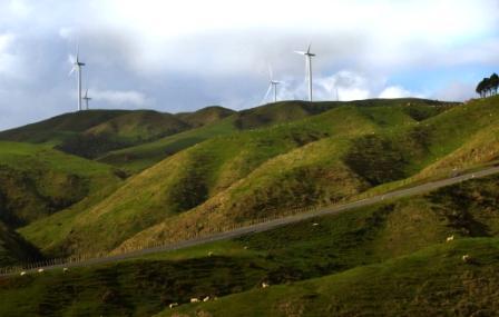 Pipiwharauroa Walking And Biking Trail Image
